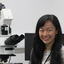 Dr Mingyuan Lu