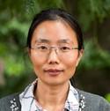 Dr Yu Gao