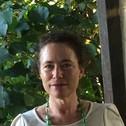 Dr Karyn Healy